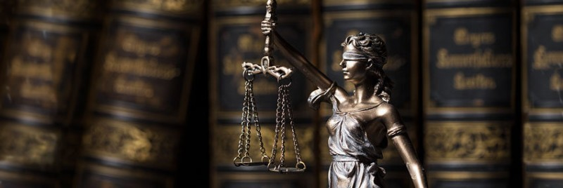 Attorney Specialized in Texas Family Law